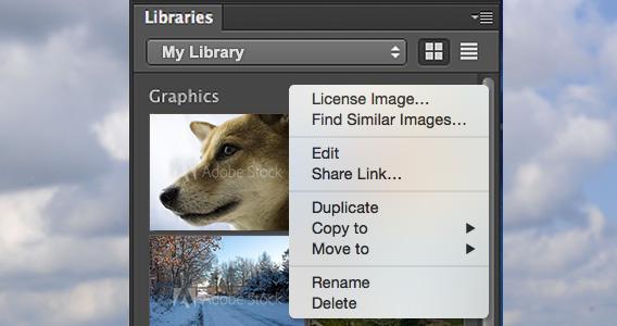 Adobe Stock License Image
