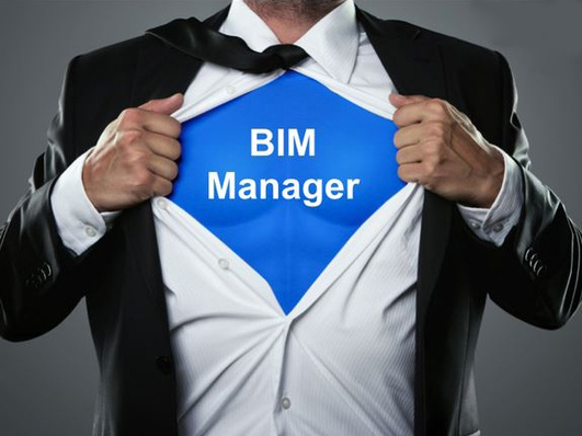 bim_manager
