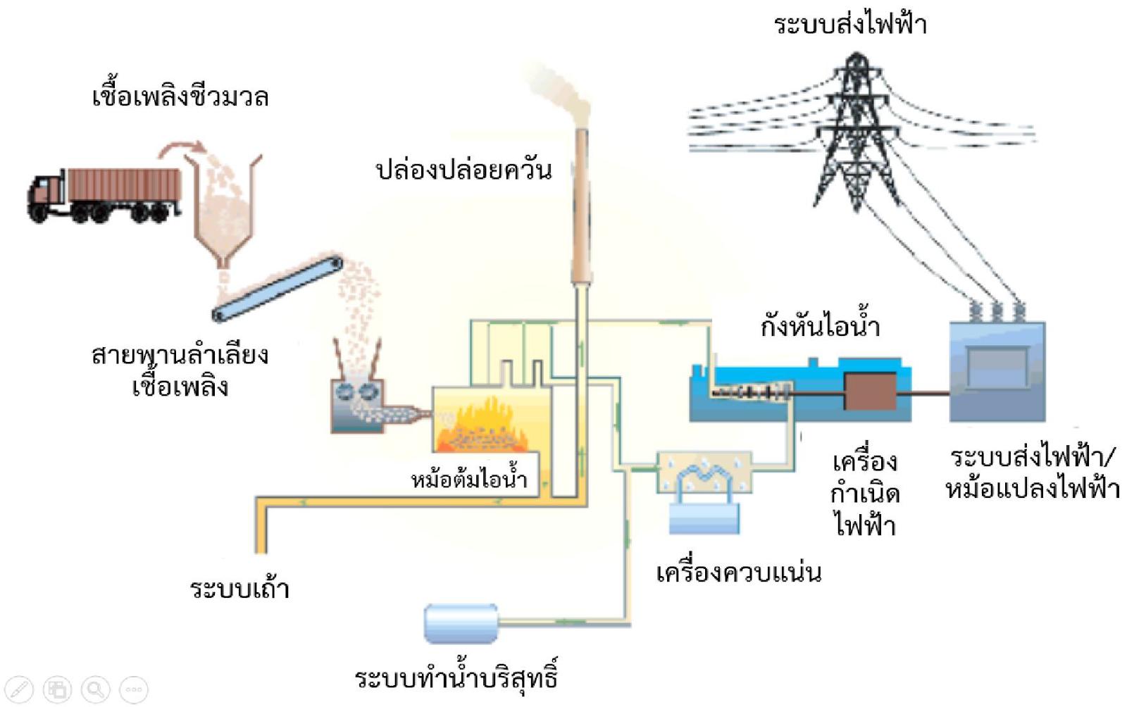 จากพืชไร่กลายเป็นพลังงานไฟฟ้า_03