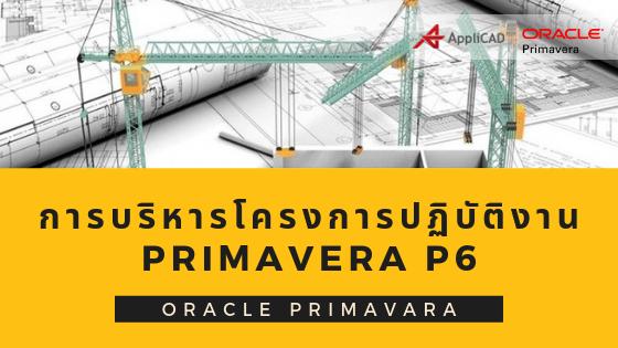 การบริหารโครงการเรื่องการปฏิบัติงานด้วยโปรแกรม Primavera P6